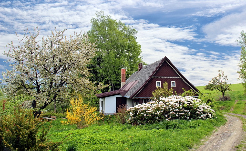Homeowner's insurance coverage